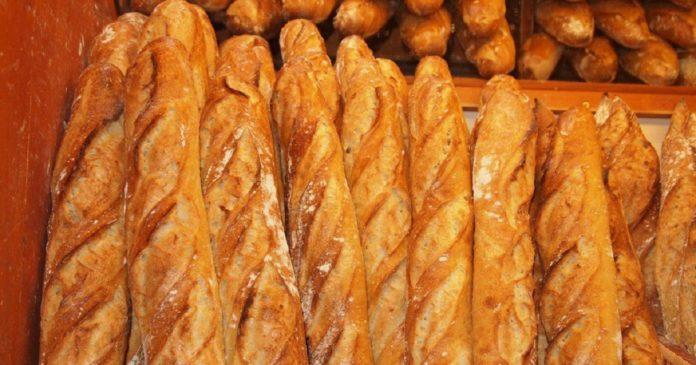Le pain au Togo, désormais fait à base de farine de manioc (2)