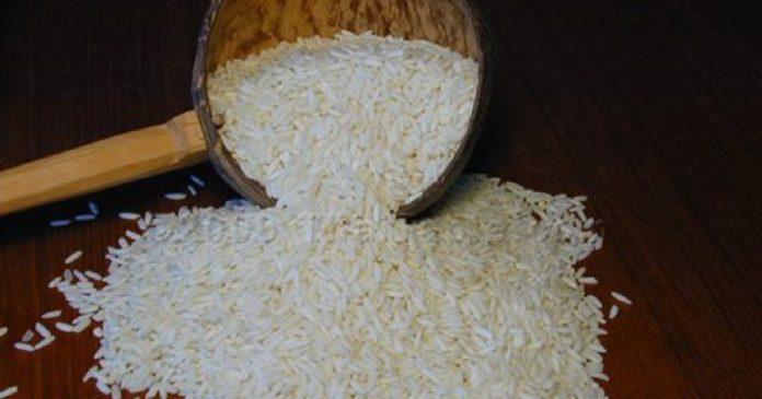 Choléra , un vaccin à base du riz développé par les chercheurs japonais