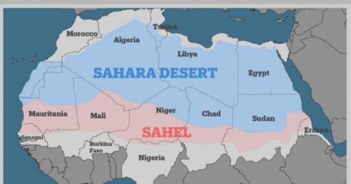 Lutte antiterroriste au Sahel , la France, obstacle à l'intervention de l'Afrique en Afrique